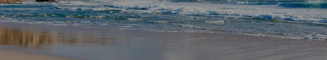 ancora tours excursiones cruceros playa